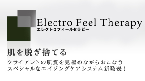 ELECTRO FEEL THERAPY エレクトロフィールセラピー